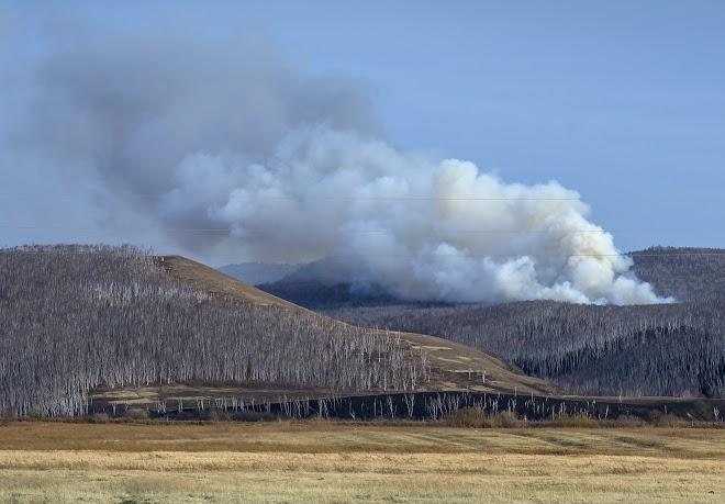 Стихийные пожары охватили Забайкальский край в середине апреля