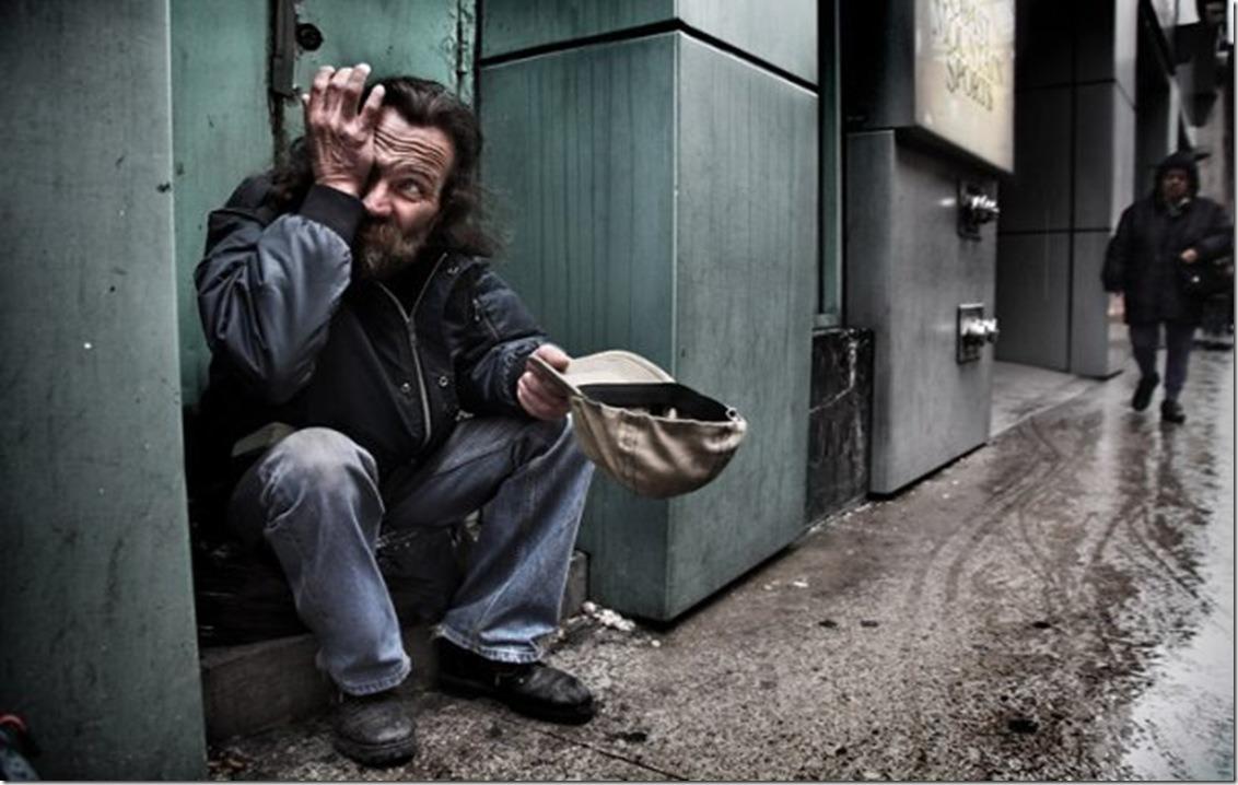Завершен прием заявок на конкурс помощи бездомным имени Надежды Монетовой